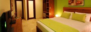 Solid Surf House - Bali - Deluxe room - view - luxury